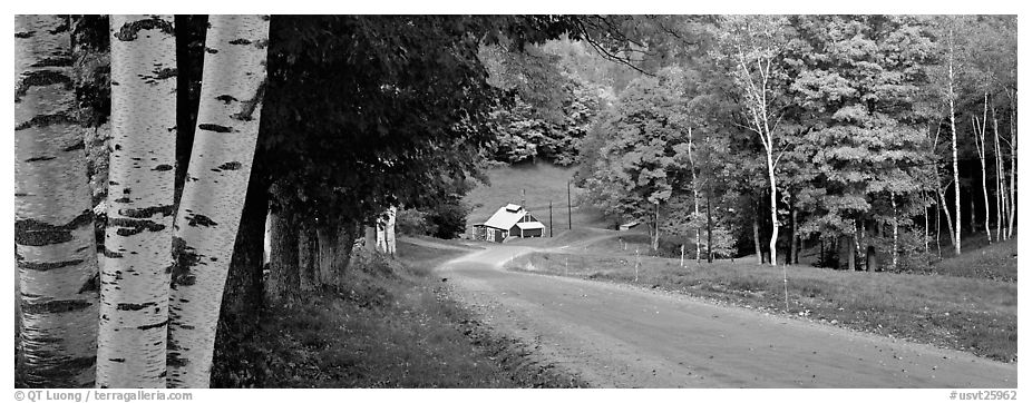 Pastoral landscape in autumn with road. Vermont, New England, USA (black and white)