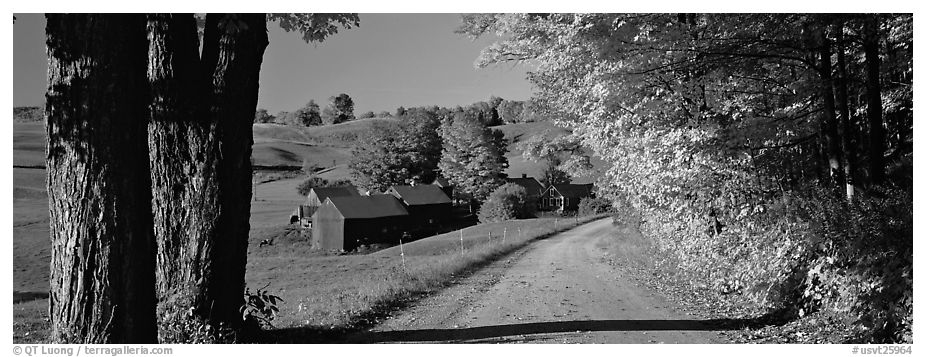 Pastoral view with road and farm in autumn. Vermont, New England, USA (black and white)