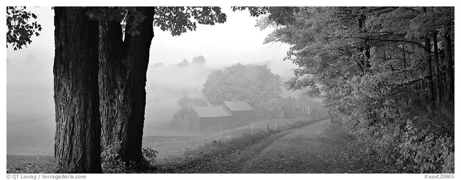 Rural view with road and farm in autumn fog. Vermont, New England, USA (black and white)