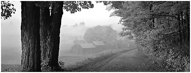 Rural view with road and farm in autumn fog. Vermont, New England, USA (Panoramic black and white)