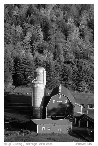 Farm and silos surrounded by hills in autumn  foliage. Vermont, New England, USA (black and white)