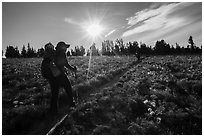 Hikers on Face Trail surrounded by wildflowers. Jedediah Smith Wilderness,  Caribou-Targhee National Forest, Idaho, USA ( black and white)