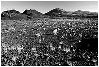 Lava field, Craters of the Moon National Monument. Idaho, USA ( black and white)