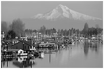 Houseboats on North Portland Harbor and snow-covered Mt Hood. Portland, Oregon, USA ( black and white)