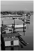 Houseboats and Mt Hood. Portland, Oregon, USA (black and white)