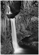 Basalt columns and Toketee Falls. Oregon, USA ( black and white)