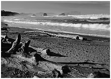 Logs on beach and surf near Bandon. Bandon, Oregon, USA ( black and white)
