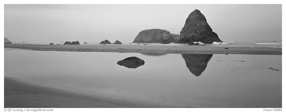 Sea stacks reflected in tidepool. Oregon, USA (black and white)