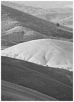 Weathered ash hummocks and sagebrush-covered slopes. John Day Fossils Bed National Monument, Oregon, USA ( black and white)