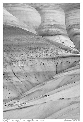 Eroded volcanic ash hummocks. John Day Fossils Bed National Monument, Oregon, USA (black and white)