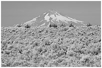 Mt Hood above sagebrush-covered plateau. Oregon, USA (black and white)
