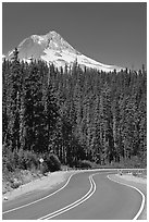 Road and Mt Hood. Oregon, USA (black and white)