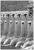 Bonneville Dam. Columbia River Gorge, Oregon, USA ( black and white)
