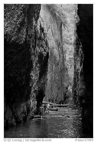 Hikers wading, Oneonta Gorge. Columbia River Gorge, Oregon, USA (black and white)
