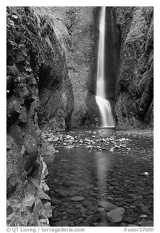 Oneonta Falls at the end of Oneonta Gorge. Columbia River Gorge, Oregon, USA (black and white)