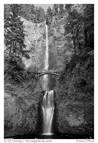 Multnomah Falls. Columbia River Gorge, Oregon, USA (black and white)