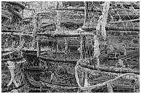 Traps for crabbing. Newport, Oregon, USA (black and white)