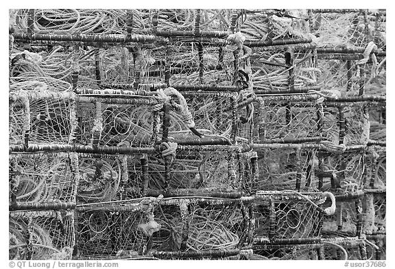 Close-up of crab traps. Newport, Oregon, USA (black and white)