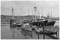 Commercial fishing boats. Newport, Oregon, USA (black and white)