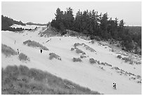 Dunes and hikers, Oregon Dunes National Recreation Area. Oregon, USA (black and white)