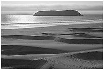 Sand dunes and island, Pistol River State Park. Oregon, USA (black and white)
