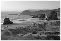 Grasses, beach and seastacks, late afternoon, Pistol River State Park. Oregon, USA (black and white)