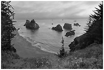 Coastline at sunset, Samuel Boardman State Park. Oregon, USA (black and white)