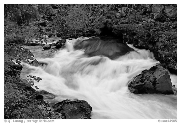 Water flowing from under lava tube. Oregon, USA (black and white)