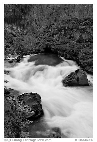 Water flowing from under basalt tube. Oregon, USA (black and white)