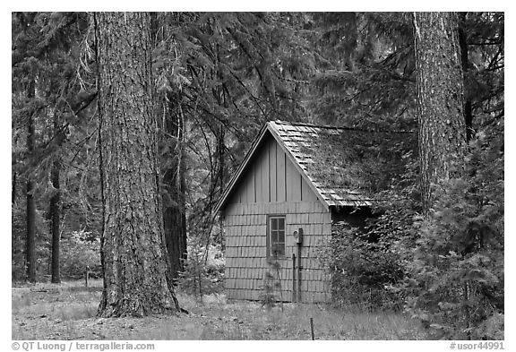 Union Creek red cabin in forest. Oregon, USA (black and white)
