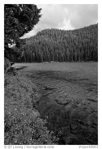 Clear emerald waters, Devils Lake. Oregon, USA (black and white)