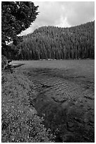 Clear emerald waters, Devils Lake. Oregon, USA ( black and white)