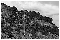 Lava outcrop, Deschutes National Forest. Oregon, USA (black and white)