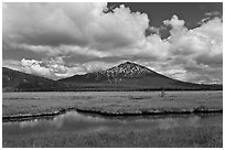 Meadow and South Sister in early summer. Oregon, USA (black and white)