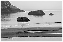 Pool and rocks, Harris Beach State Park. Oregon, USA ( black and white)