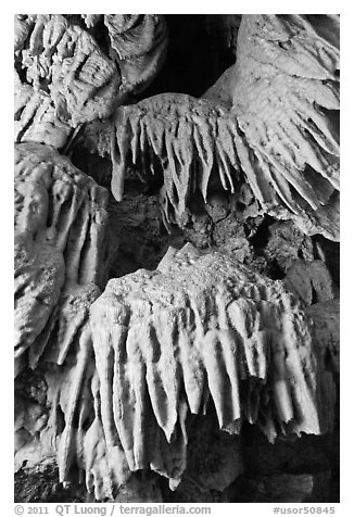 Stalactites, Oregon Caves National Monument. Oregon, USA (black and white)
