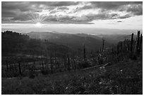 Sun setting over Burned forest, Grizzly Peak. Cascade Siskiyou National Monument, Oregon, USA ( black and white)