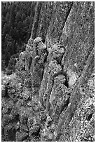 Close up of columns of basalt on Pilot Rock. Cascade Siskiyou National Monument, Oregon, USA ( black and white)