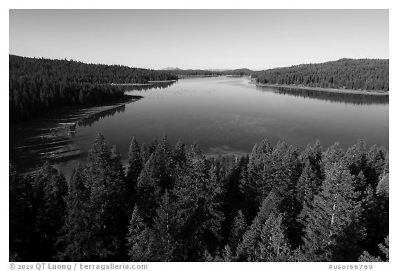 Aerial view of Hyatt Lake east shore. Cascade Siskiyou National Monument, Oregon, USA (black and white)