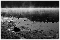 Fog and sunlight, Hyatt Lake. Cascade Siskiyou National Monument, Oregon, USA ( black and white)