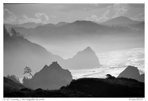 Rugged Coastline, late afternoon, Hamburg Mountain State Park. Oregon, USA (black and white)