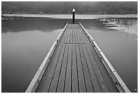 Deck in a coastal lagoon. Oregon, USA (black and white)