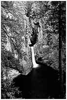 Toketee Falls. Oregon, USA ( black and white)