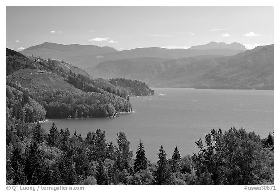 Riffe Lake. Washington (black and white)