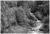 Basalt columns and Muddy River in Lava Canyon. Mount St Helens National Volcanic Monument, Washington (black and white)