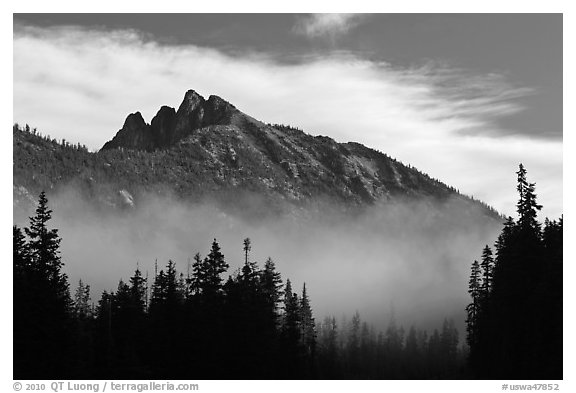 Whistler Mountain emerging from fog. Washington (black and white)