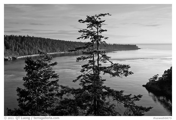 Deception Bay, Whidbey Island. Washington (black and white)