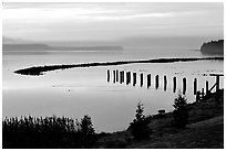 Foggy morning, Puget Sound. Olympic Peninsula, Washington ( black and white)