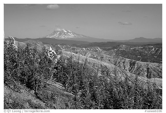 View over Cascade range with Snowy volcano. Mount St Helens National Volcanic Monument, Washington (black and white)