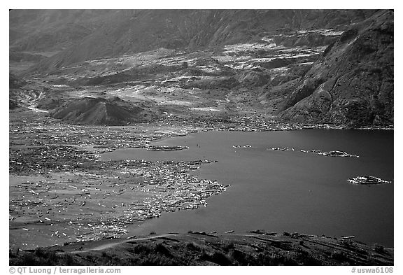Spirit Lake, partly covered with floating logs. Mount St Helens National Volcanic Monument, Washington (black and white)